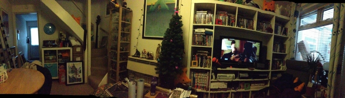 spot the cats